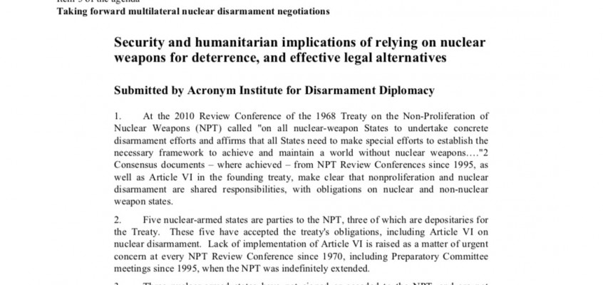Acronym's UN working paper on Deterrence